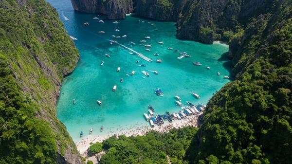 Maya Bay - Retour au bercail des requins à pointes noires